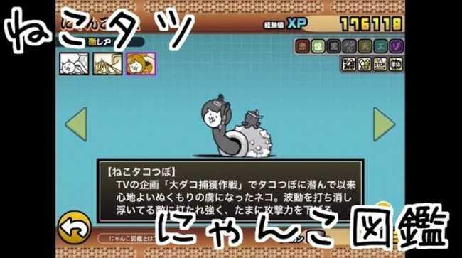 f:id:momokuri777:20180505000549j:plain