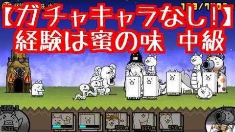 f:id:momokuri777:20180328221806j:plain