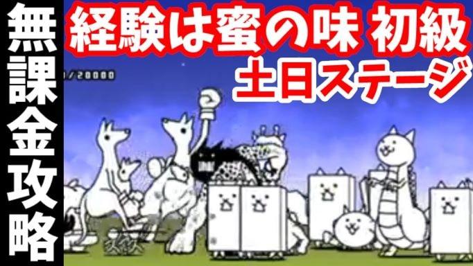 f:id:momokuri777:20211010124015j:plain