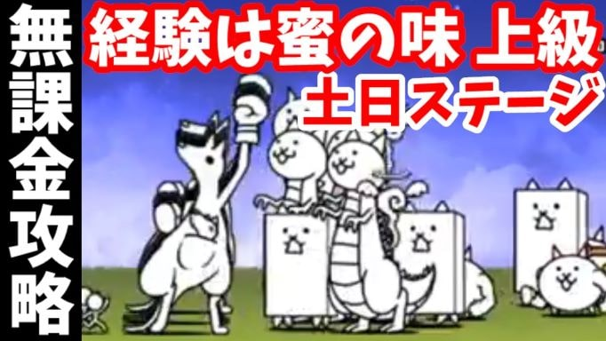 f:id:momokuri777:20211010124505j:plain