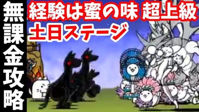 f:id:momokuri777:20211010124658j:plain