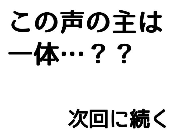f:id:momomo_ri:20210217233156j:image