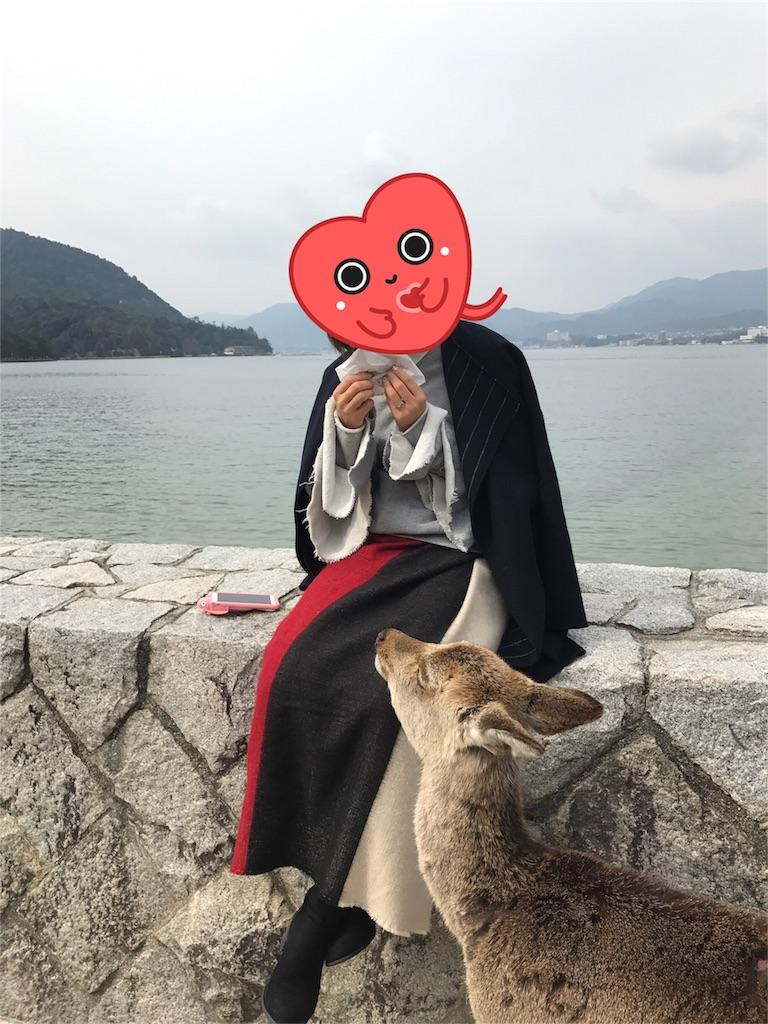 f:id:momomomchi:20170321180021j:image