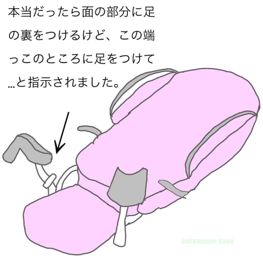 f:id:momongaa394:20200126151535j:image