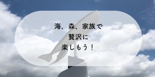 f:id:momongakinomi:20190618133418j:plain