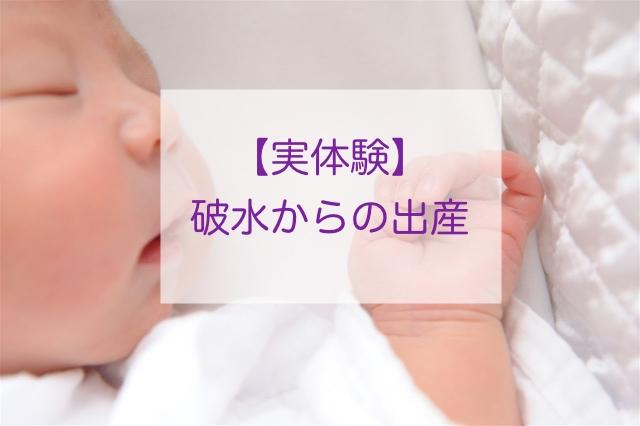 f:id:momongakinomi:20190712231024j:plain