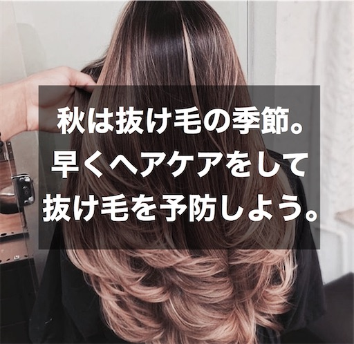 f:id:momono_otonalog:20200904212558j:image