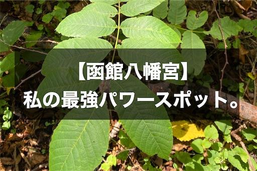 f:id:momono_otonalog:20200924213726j:image
