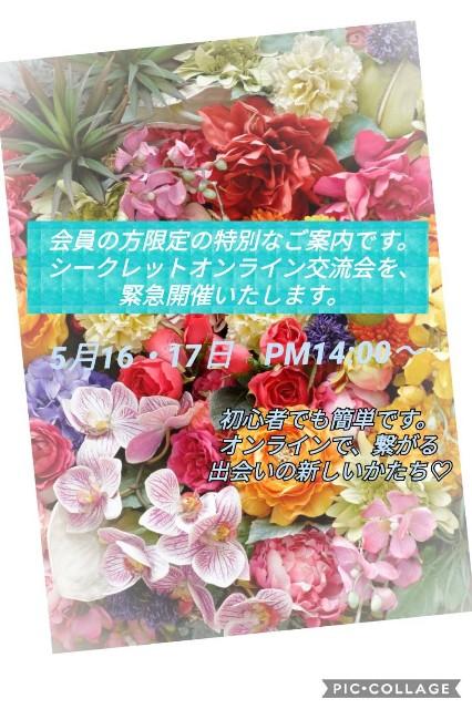 f:id:momonohoshi:20200511233420j:plain