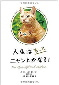 f:id:momonootukisama:20170327094111p:plain