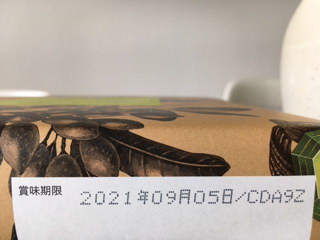 f:id:momopokopan:20210504224225j:plain