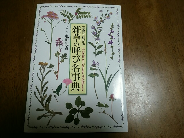 f:id:momosakukao1107:20161024223445j:image