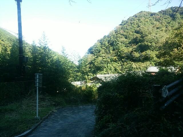 f:id:momosakukao1107:20161111044023j:image