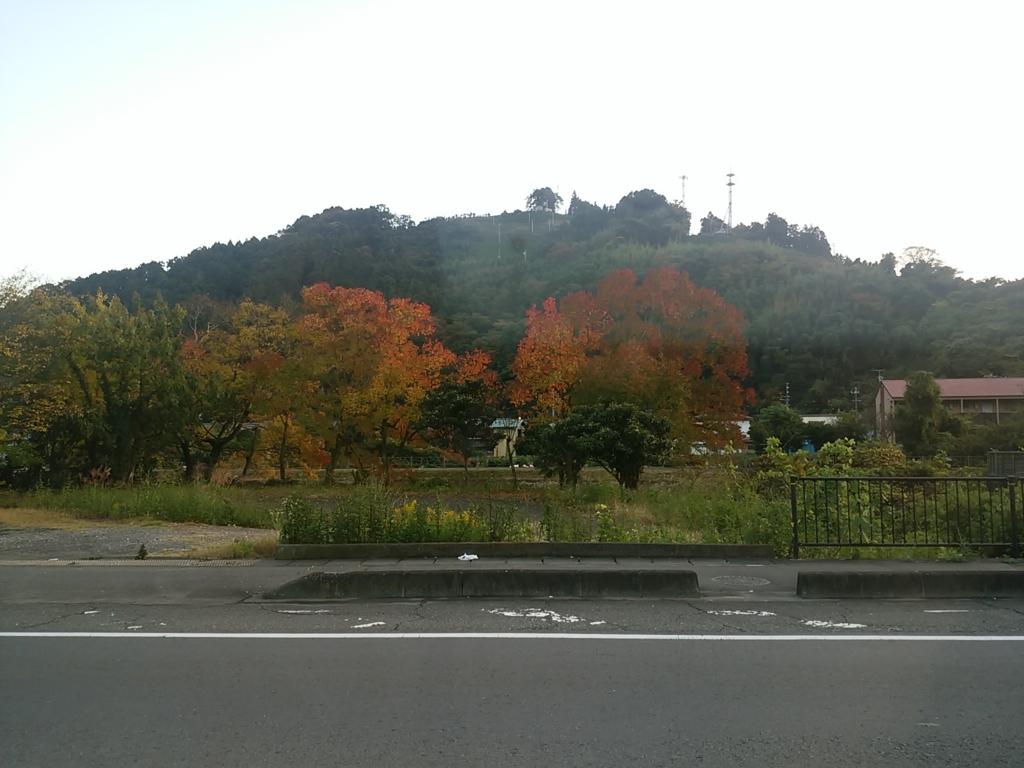f:id:momosakukao1107:20161123055724j:plain