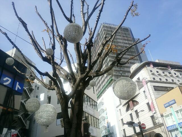 f:id:momosakukao1107:20161212174613j:image
