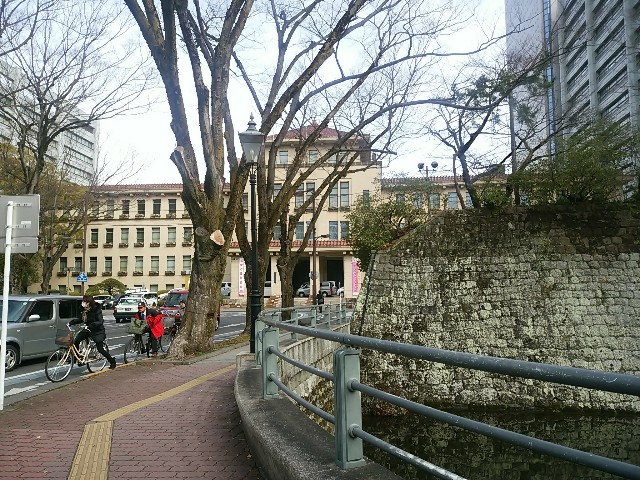 f:id:momosakukao1107:20170303200103j:image