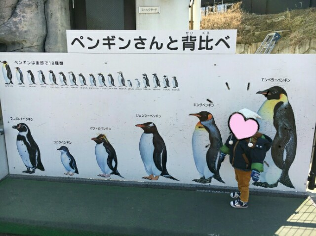 f:id:momosuke418:20180219211135j:image