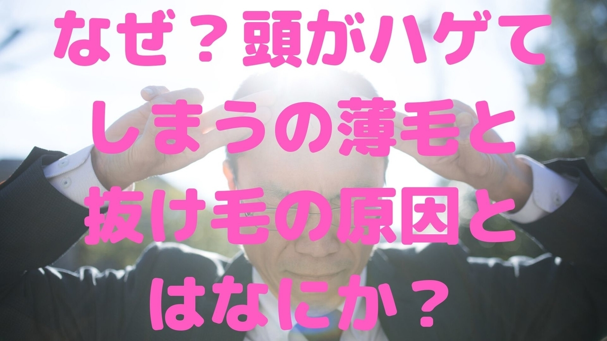 f:id:momotaitai:20200411180935j:plain