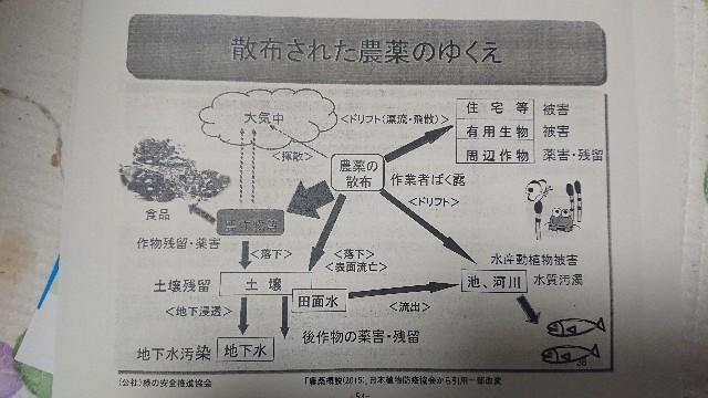 f:id:momotarohime:20200710233245j:image