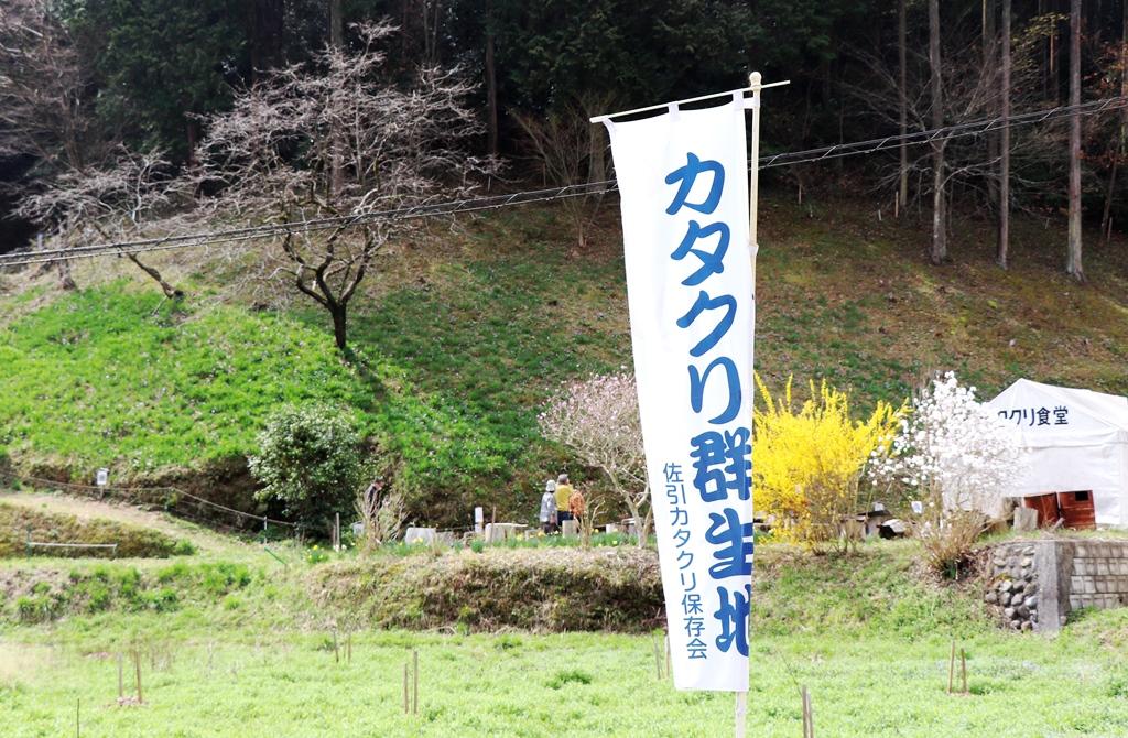 f:id:momotchi_blog:20210330185512j:plain