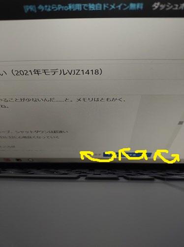 f:id:momotoyuin:20210522235329j:plain