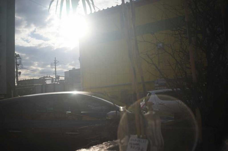 full open太陽に向けて完全逆光