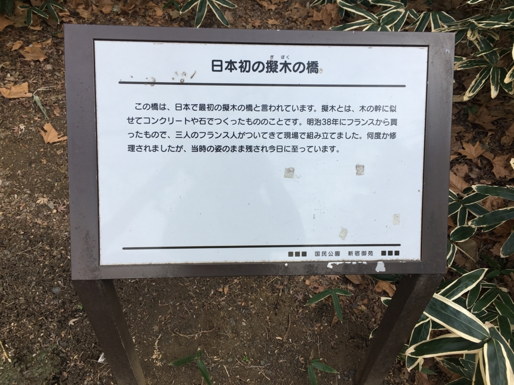 f:id:momoyo-haraguchi:20180216233945j:plain:w500
