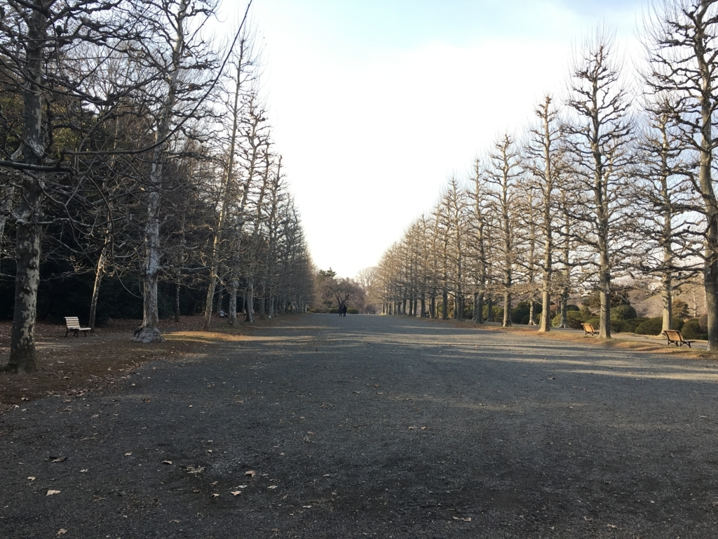 f:id:momoyo-haraguchi:20180216234053j:plain:w500