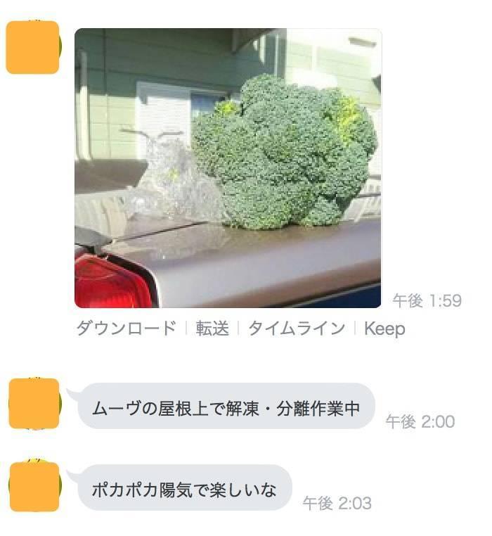 f:id:momoyo-haraguchi:20180302173807j:plain:w350