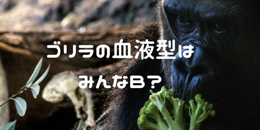 f:id:momoyo-haraguchi:20180307231445j:plain