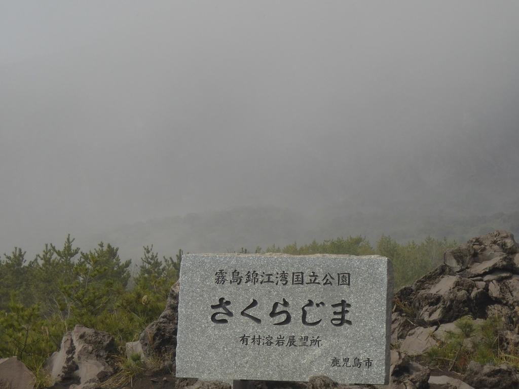 f:id:momoyorozu:20190217001541j:plain