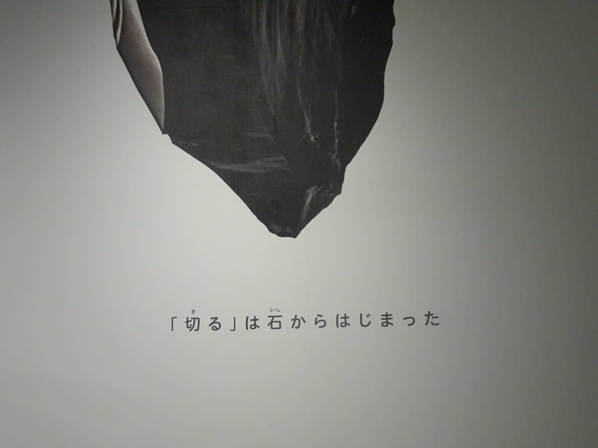 f:id:momoyorozu:20200531005811j:plain