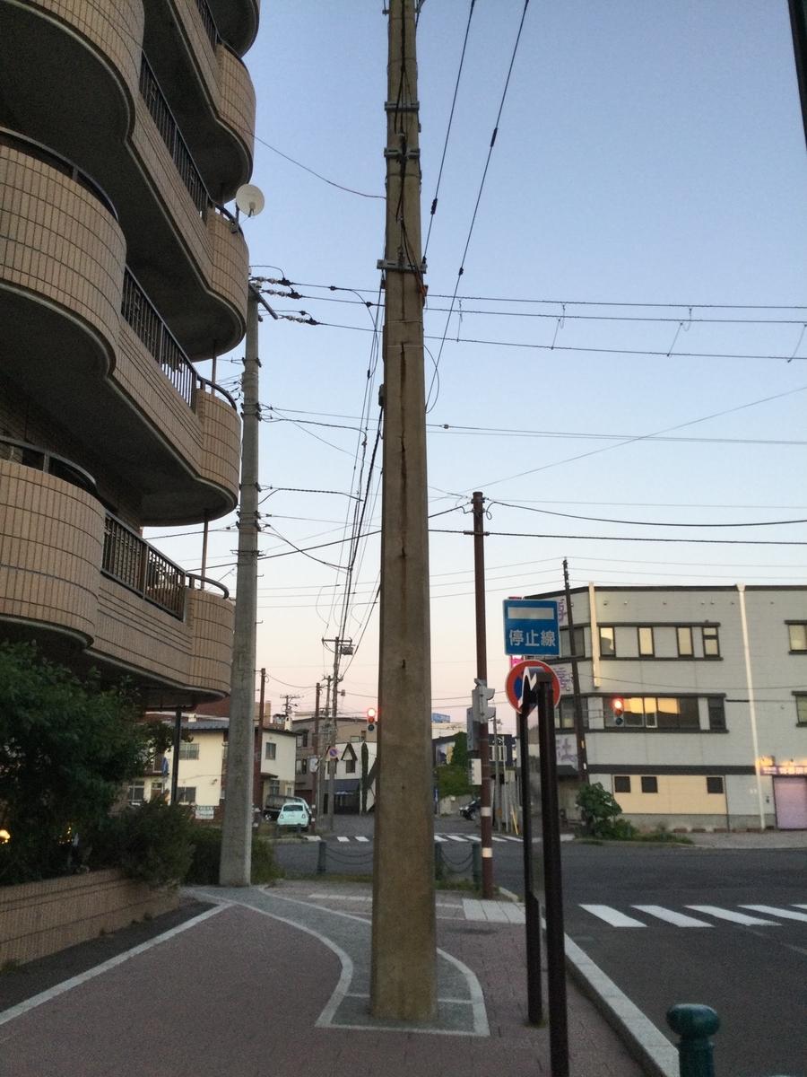 f:id:momoyorozu:20210805004218j:plain