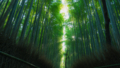 嵯峨野竹林2