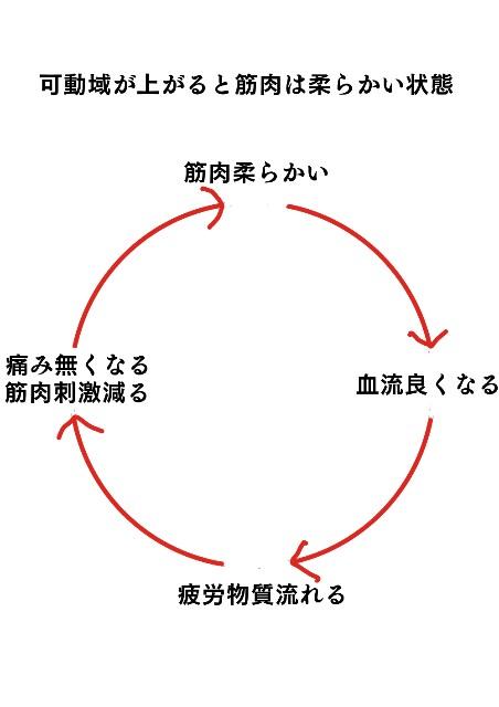 f:id:mon-kinako1:20170215043100j:image