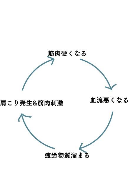 f:id:mon-kinako1:20170215051205j:image