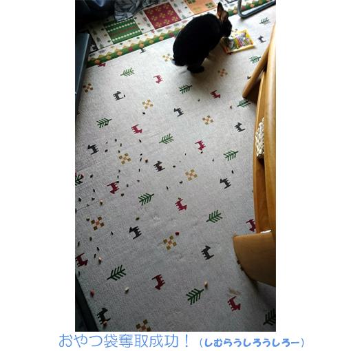 f:id:monakablackrabbit:20170714191809j:plain