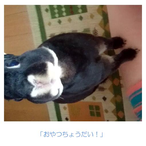 f:id:monakablackrabbit:20170717174633j:plain