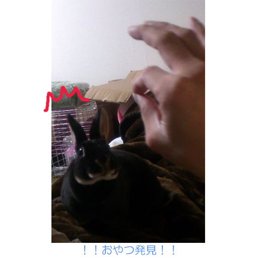 f:id:monakablackrabbit:20170718183314j:plain