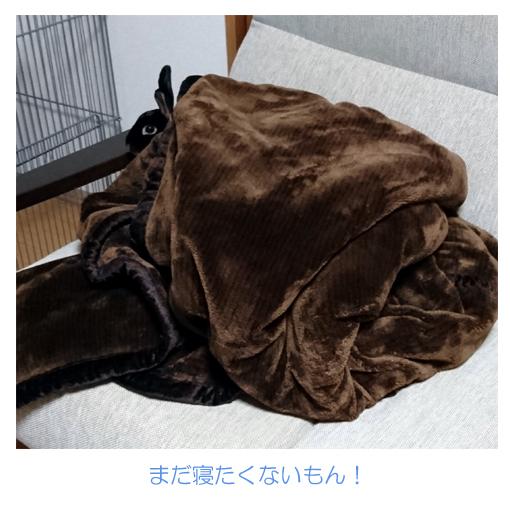 f:id:monakablackrabbit:20171012172414j:plain