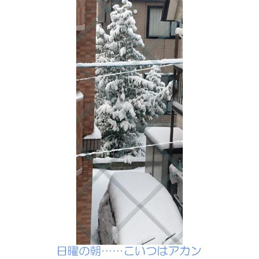 f:id:monakablackrabbit:20171120191422j:plain