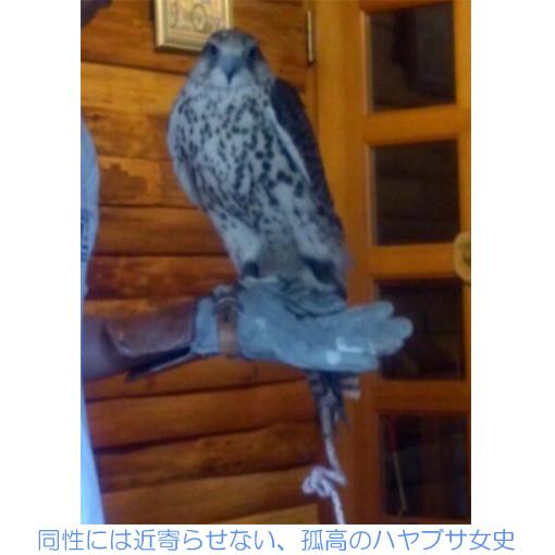 f:id:monakablackrabbit:20180116183215j:plain