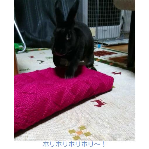 f:id:monakablackrabbit:20180212181318j:plain