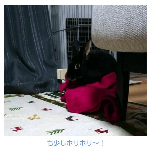 f:id:monakablackrabbit:20180212183917j:plain