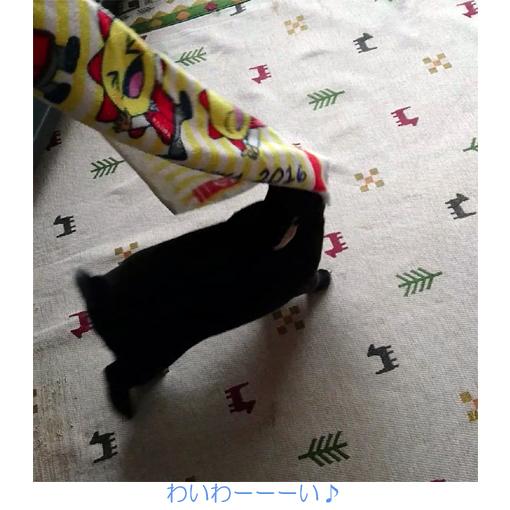 f:id:monakablackrabbit:20180320180038j:plain