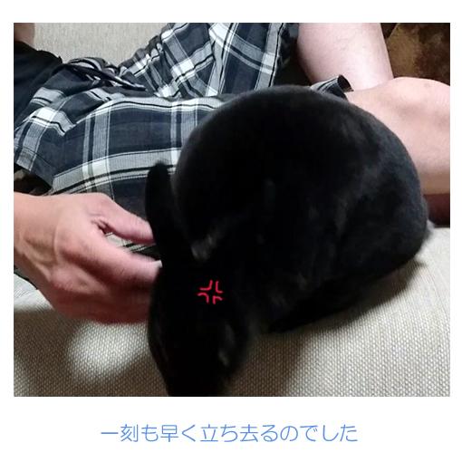 f:id:monakablackrabbit:20180811185626j:plain