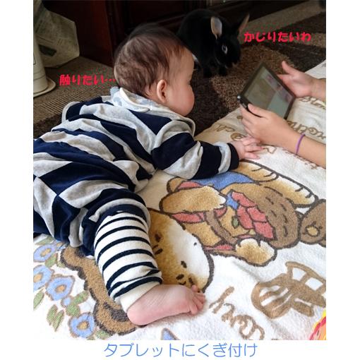 f:id:monakablackrabbit:20200114012934j:plain