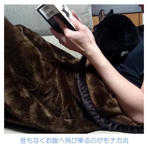 f:id:monakablackrabbit:20200124023101j:plain