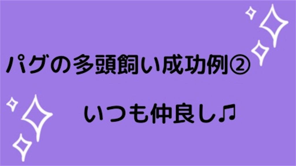 f:id:monarobi:20190425161232j:image