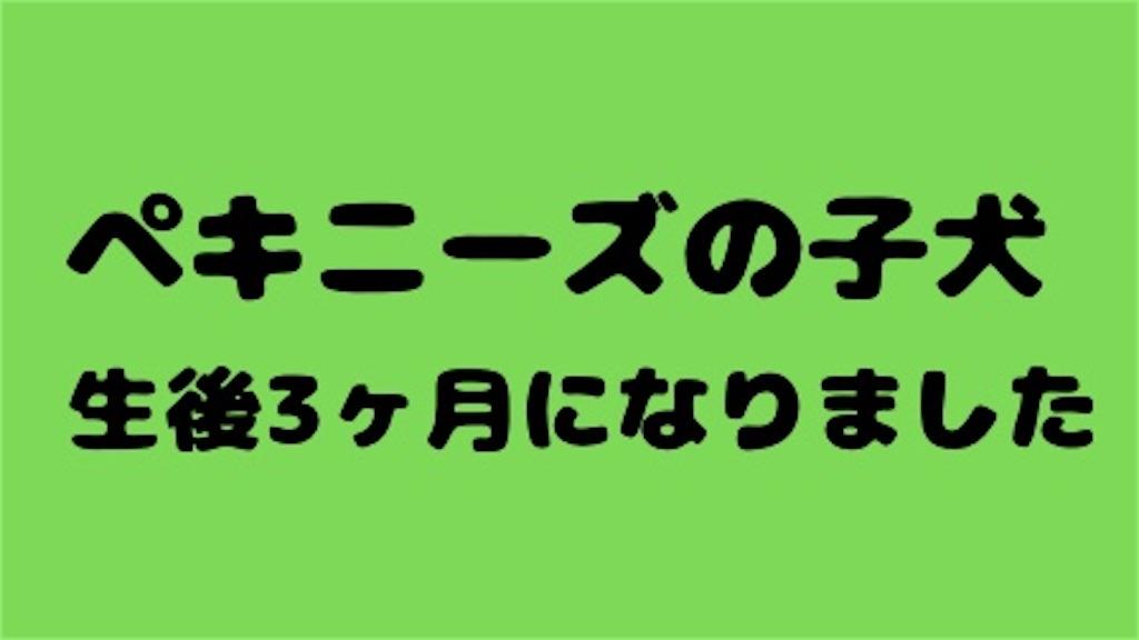f:id:monarobi:20210505150305j:plain